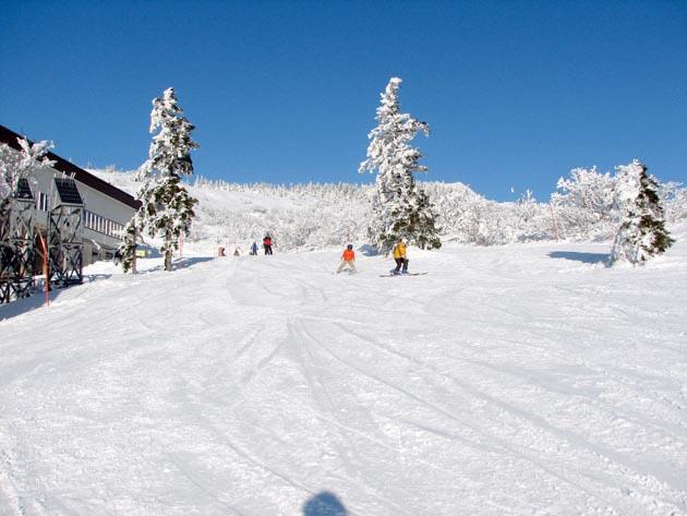 阿仁スキー場