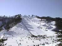 金谷山スキー場