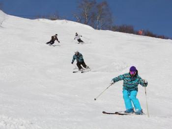 村上市 ぶどうスキー場