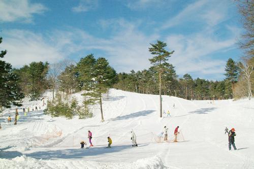 中沢ヴィレッジ森のスキー場
