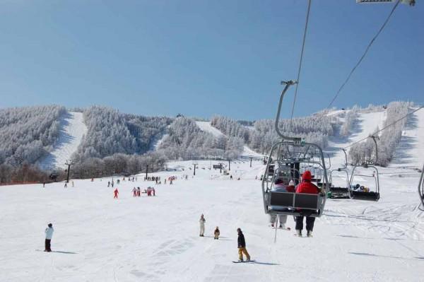 菅平高原(パインビーク)スキー場