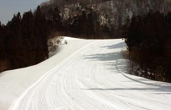 秋田市太平山スキー場オーパス