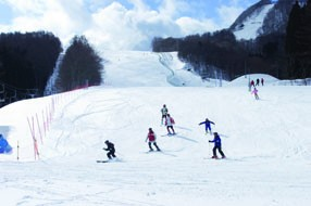 八幡平市田山スキー場