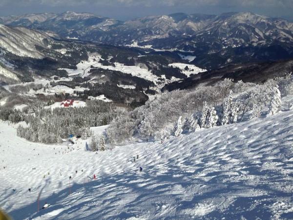 ハチ高原スキー場